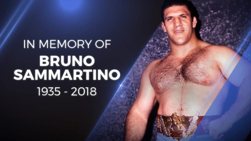Bruno Sammartino Passing