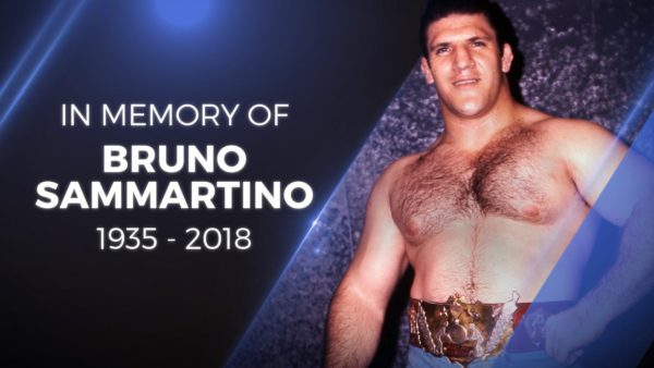 Bruno Sammartino Passes
